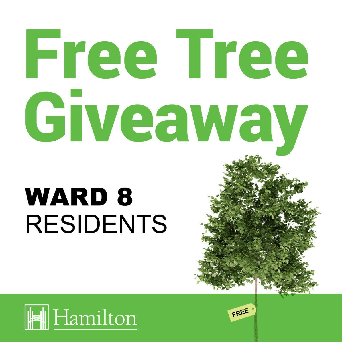 Ward 8 Tree Giveaway